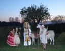6. Lama/Alpaka Stammtisch - 30.10.2010_1