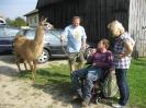 Tiergestützte Therapie mit Lamas/Alpakas_1