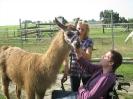 Tiergestützte Therapie mit Lamas/Alpakas_2